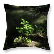 River In The Woods Throw Pillow