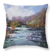 River Jewels Throw Pillow