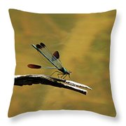 River Jewelwing Throw Pillow