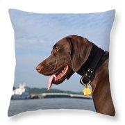 River Life Throw Pillow