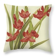 River Lily Or Crimson Flag Throw Pillow