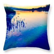 River Musing Throw Pillow