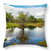 River Oasis Throw Pillow
