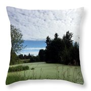 River Of Algae And Stippled Clouds Throw Pillow