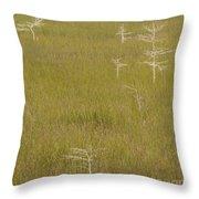 River Of Grass 1a Throw Pillow