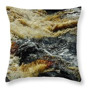 River On The Rocks Throw Pillow