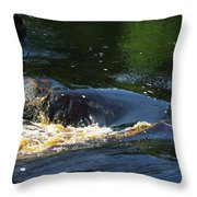 River On The Rocks II Throw Pillow