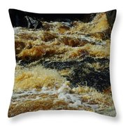 River On The Rocks IIi Throw Pillow