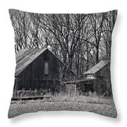 River Rats Throw Pillow