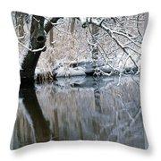 River Reflection 4 Throw Pillow