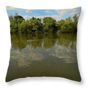 River Reflection Throw Pillow