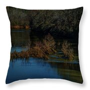 River Rock Island Throw Pillow