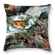 River Rock Leaves Throw Pillow