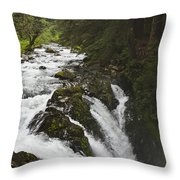 River Running Throw Pillow