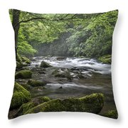 River Runs Free. Throw Pillow