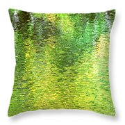 River Sanctuary Throw Pillow
