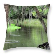 River Scenic Throw Pillow