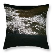 River Shimmer Throw Pillow