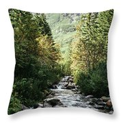 River Stream In Mountain Forest Throw Pillow