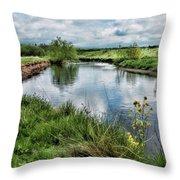 River Tame, Rspb Middleton, North Throw Pillow