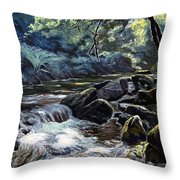 River Taw Sticklepath Throw Pillow