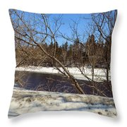 River Through The Branches Throw Pillow