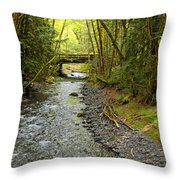 River Through The Rainforest Throw Pillow