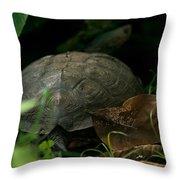 River Turtle 2 Throw Pillow
