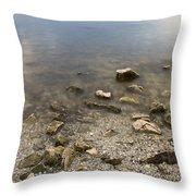River Volga2 Throw Pillow