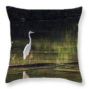 River Wader Throw Pillow