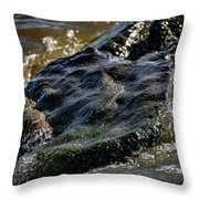 River Washed Rock Throw Pillow
