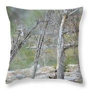 River008 Throw Pillow