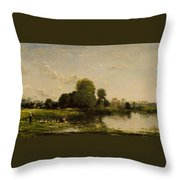 Riverbank With Fowl Throw Pillow