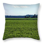 Riverbottom Farms Throw Pillow by Cricket Hackmann