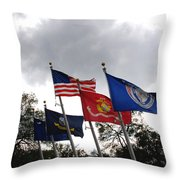 Riverfront Park In Charleston Sc Throw Pillow