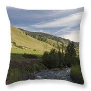 River's Bend Throw Pillow