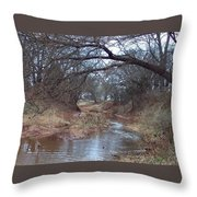 Rivers Bend Throw Pillow