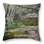 Rivers Of The Big Sur Throw Pillow