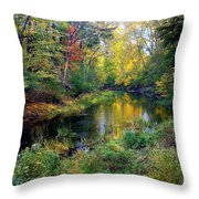 Riverscape In Autumn Throw Pillow