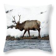 Riverside Elk Throw Pillow