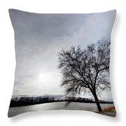 Riverwalk Tree Throw Pillow