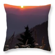 Rize And Shine. Throw Pillow