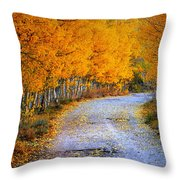 Road Between Trees Throw Pillow