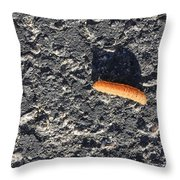 Road Caterpillar Throw Pillow