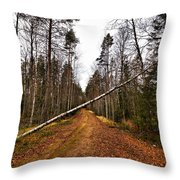 Road Closed Throw Pillow