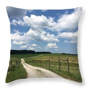 Road From The Farm Throw Pillow