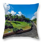 Road In Park Throw Pillow