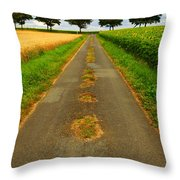 Road In Rural France Throw Pillow