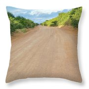 Road In Tanzania Throw Pillow
