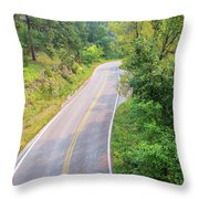 Road In The Black Hills Throw Pillow